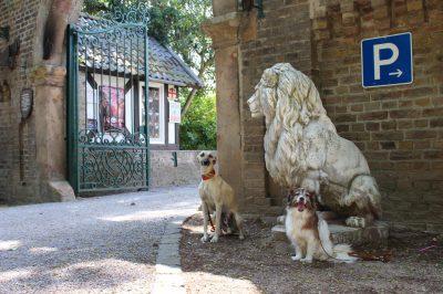 Der Wächterlöwe - oder Emile und Bijou sichern den Eingang